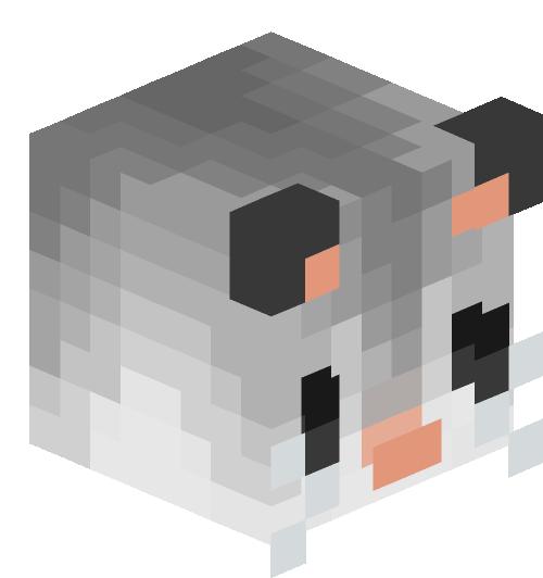 Oppossums